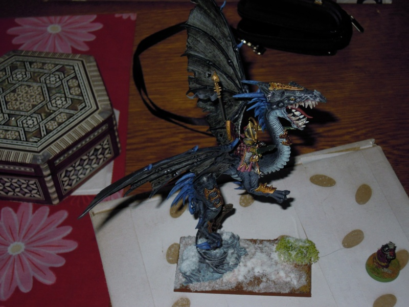 Dragon elfes noirs  Dscn1416
