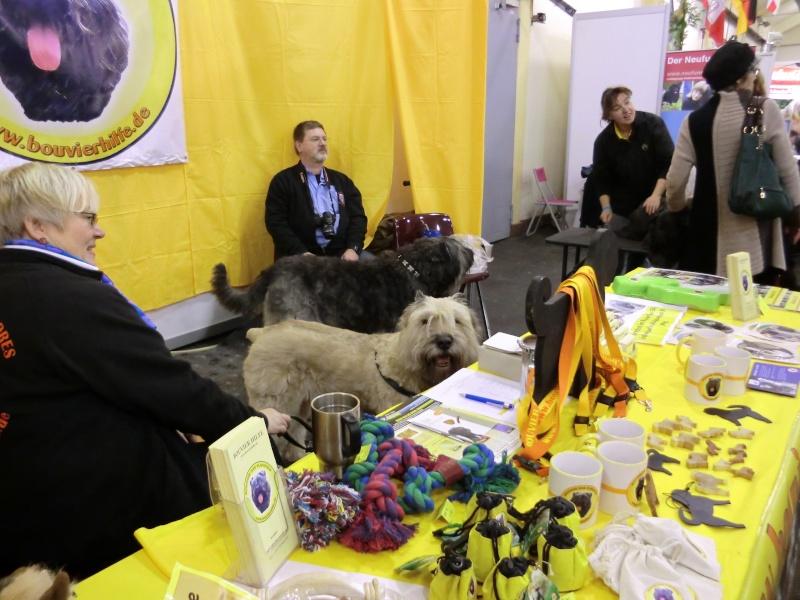 Mein Tier Oldenburg 17/18. November 2012     Cimg3925