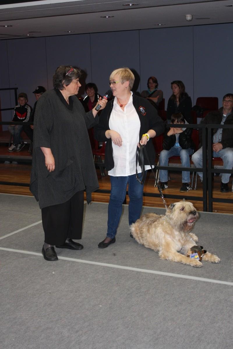 Bouvierhilfe Präsentation 2011 Oldenburg 19-20.November 2011 Img_6012