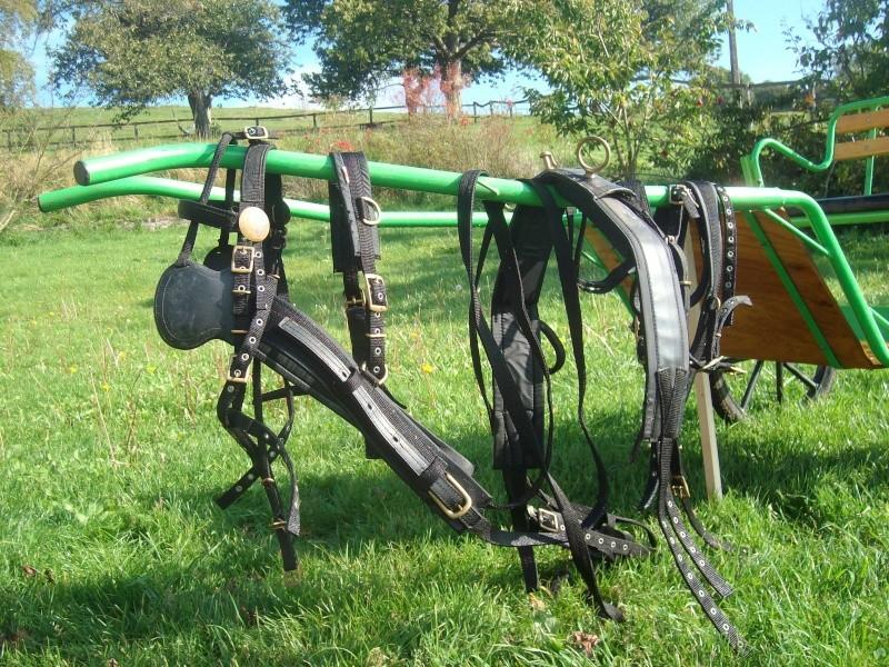 Voiture 2 roues pour Shetland (61).  Alim5214