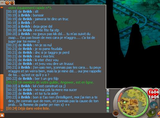 Insulte a la guilde (Bric) 11421110