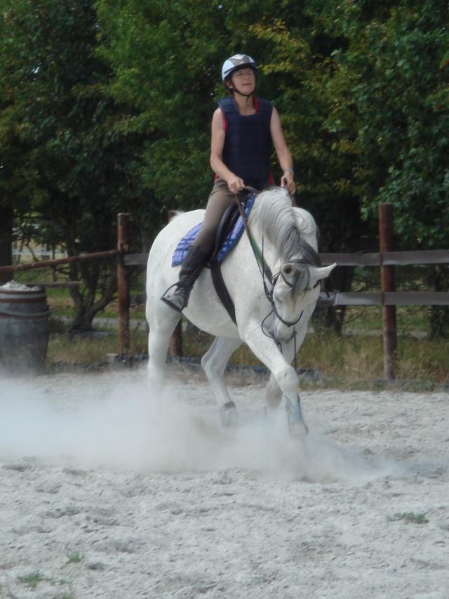 Un cheval sur la main Dsc06513
