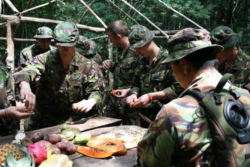 Some Images of Soldiers... Bfbs_j10