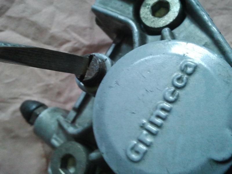 changement des plaquettes de frein arrière pour débutant Photo016