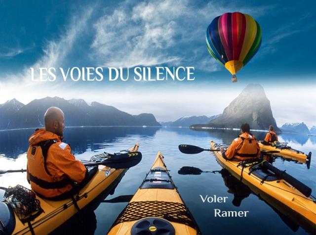 Challenge Visiteurs de novembre 2012 Les_vo10