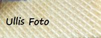 Kaminfeuer - Seite 38 29_mai16