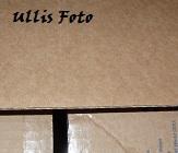 Kaminfeuer - Seite 37 Luli_016