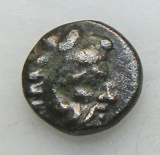 Ae incus grec.... Dscn0510