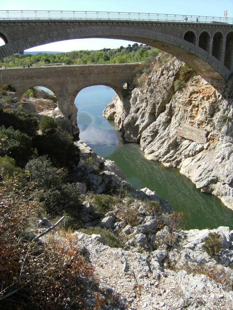 compte rendu sortie haut Hérault 7 & 8 avril 2012 - Page 4 Dscf0620