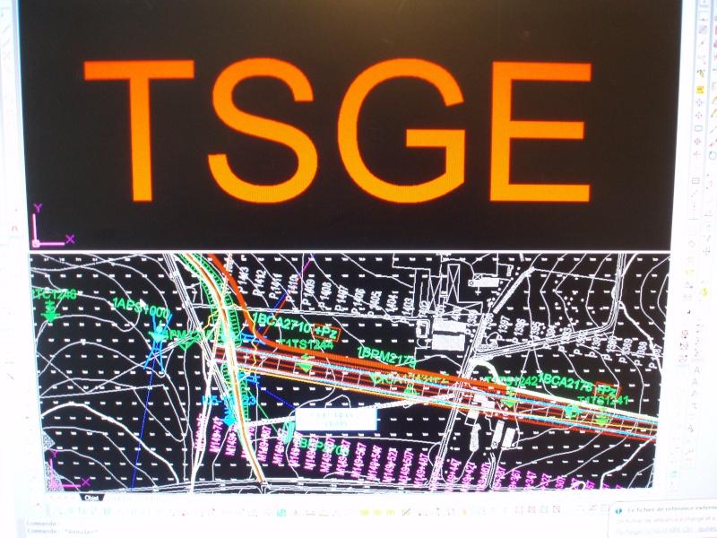 Le logo TSGE dans tous ses états ... - Page 4 Pa100010
