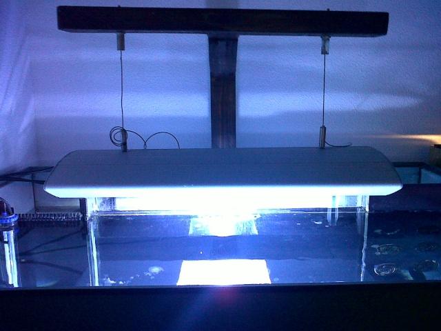 Démarrage d'un Aquamédic 288L  Bagles12
