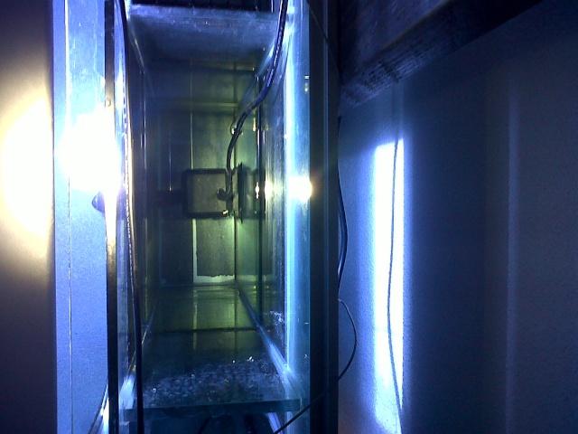 Démarrage d'un Aquamédic 288L  Bagles14