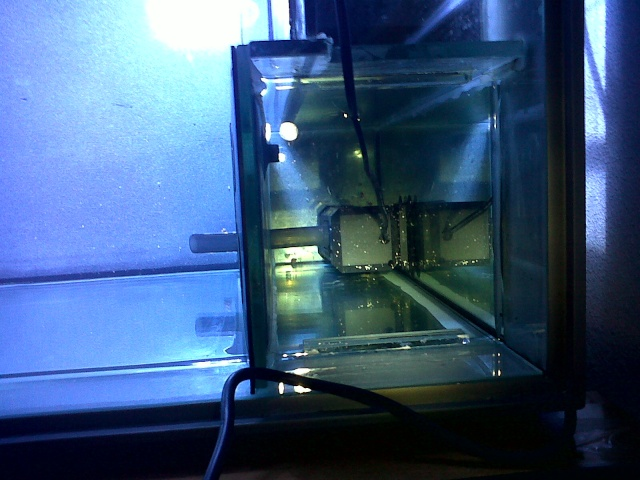 Démarrage d'un Aquamédic 288L  Bagles15