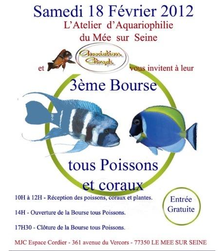 Bourrse Le Mée sur seine (77350)  le 18/02/2012 Captur31