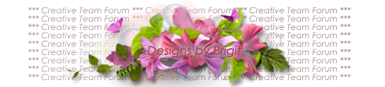 Designs by Brigit