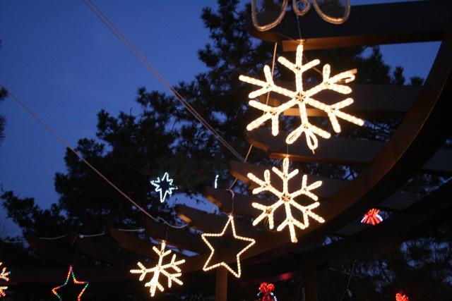 Décorations de Noël Img_4917