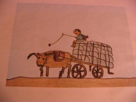 """Transports """"vraiment"""" spéciaux Il9ile10"""