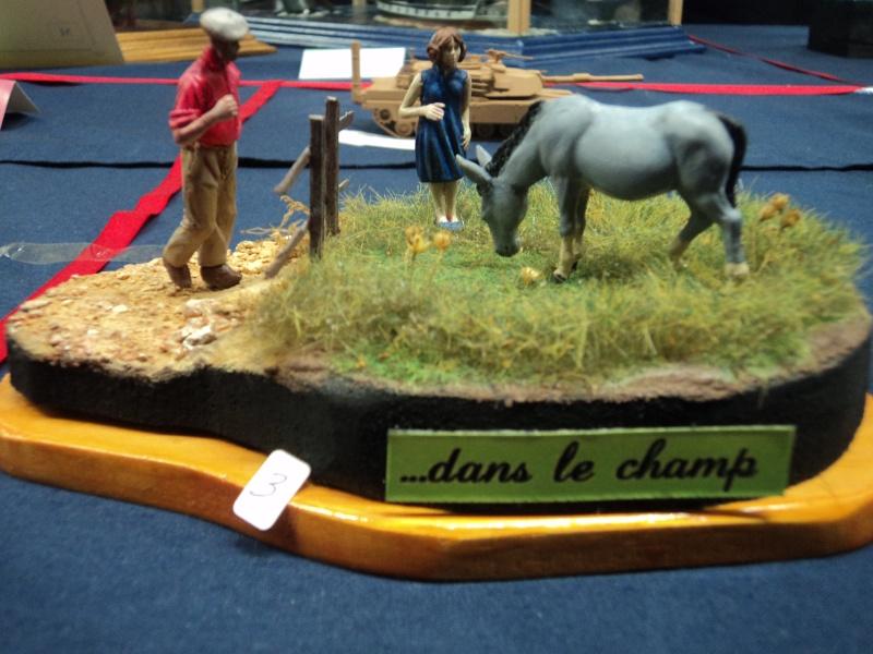 Expo maquettes de Ransart les 28 et 29 Janvier 2012 Dsc02724