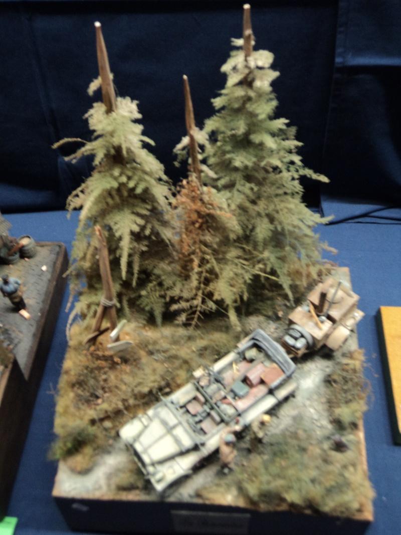Expo maquettes de Ransart les 28 et 29 Janvier 2012 Dsc02730