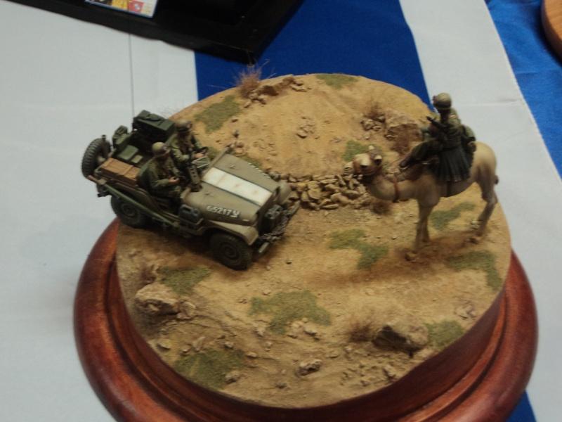 Expo maquettes de Ransart les 28 et 29 Janvier 2012 - Page 2 Dsc02781