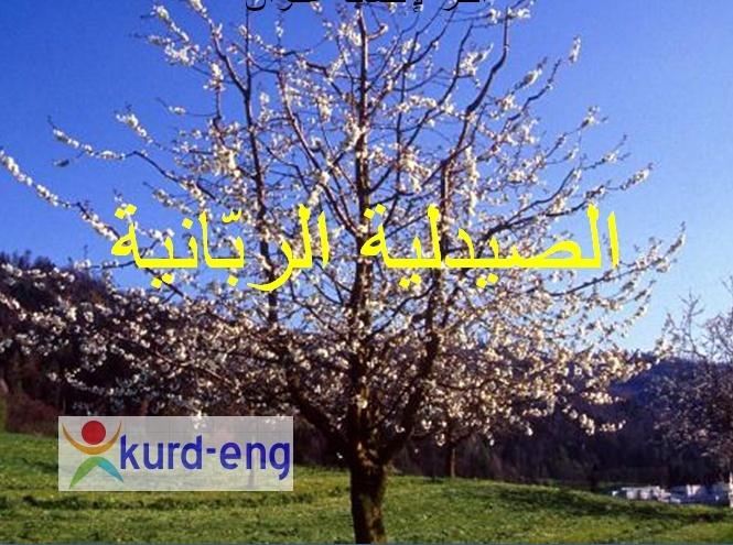 صيدلية الطبيعة سبحان الخالق Sshot-27