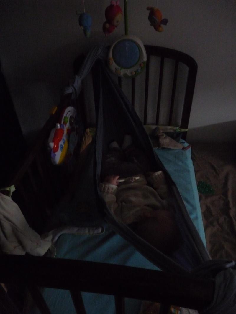 l'endormir sur du statique P1050711