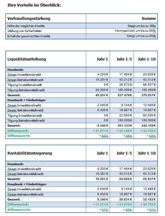 Förderfähigkeitsprüfung +  Fördermittelbilanz + Fördermittelarchitektur + Fördermittelfinanzierung Finanz17