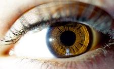 Eye Tracking – der Blick in die Gedanken Nazari10