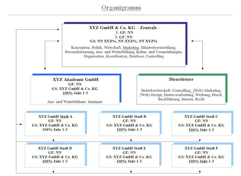 Konzept Unternehmensausbau mit Holdingstruktur Organi12