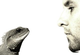In der Gesprächsführung ist die aktive Stille viel wert Schwei11