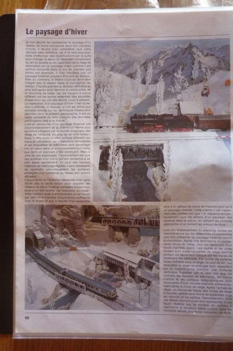Projet de réseau pour vitrine - Page 3 P1020113