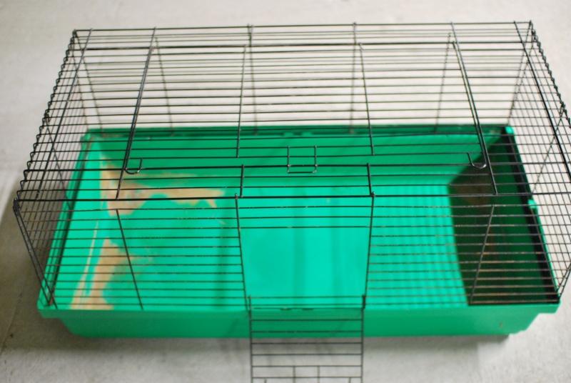 Vends cage à lapin Dsc_3910
