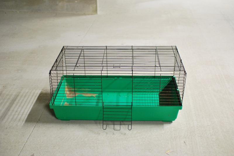 Vends cage à lapin Dsc_3911