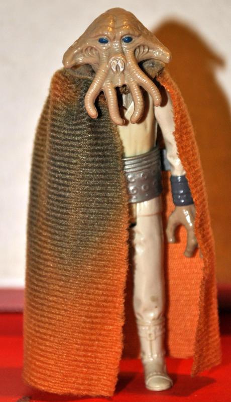 orange cape squidhead !!? 15110