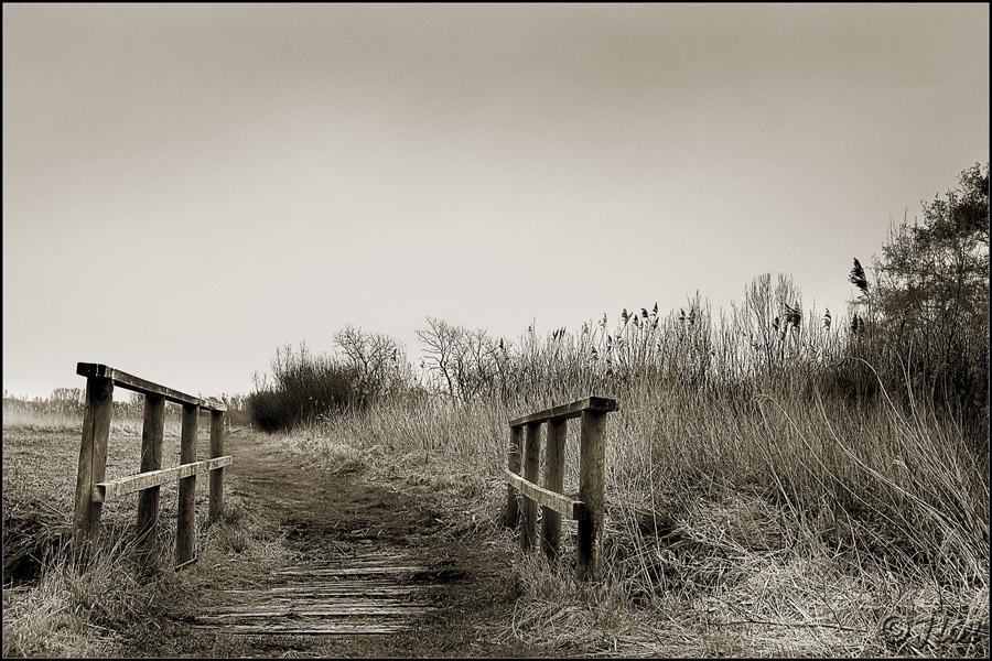Par le petit pont ... Marais10