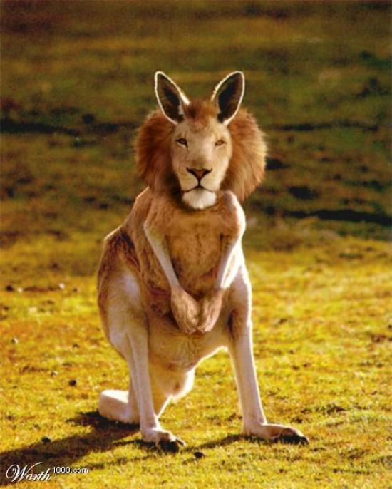 FAKES .....  de toutes sortes ...... Lion_k10