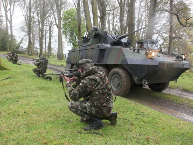 Armée Irlandaise/Irish Armed Forces Rando117