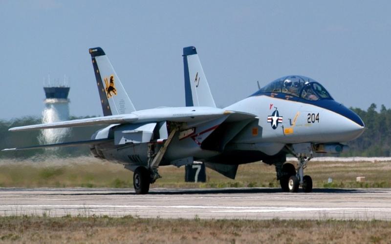 F-14 Tomcat - Page 3 Random85