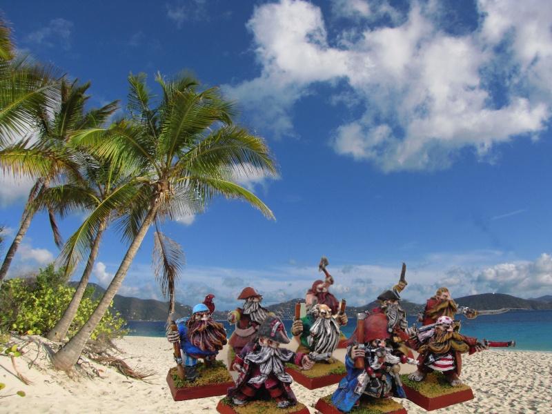 Armée de pirates nains Barbec13