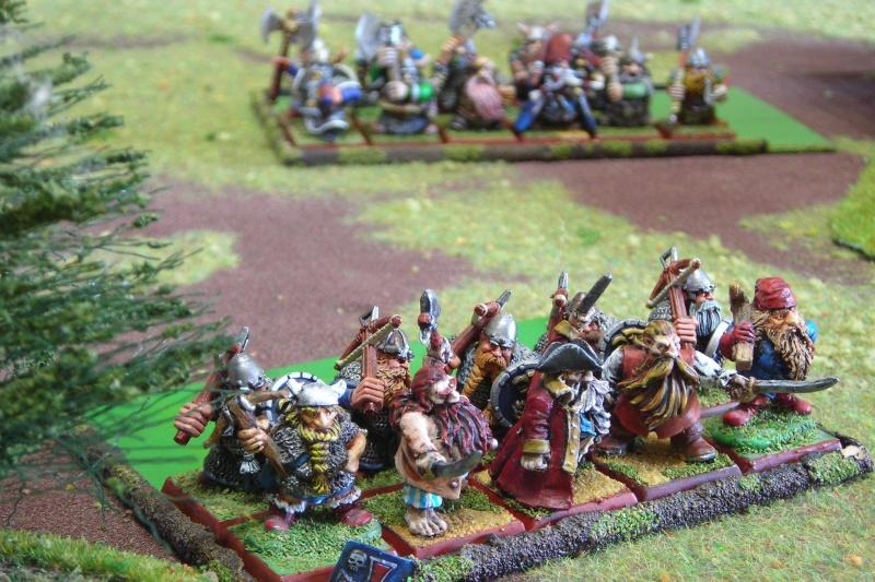 Armée de pirates nains Dscn0310