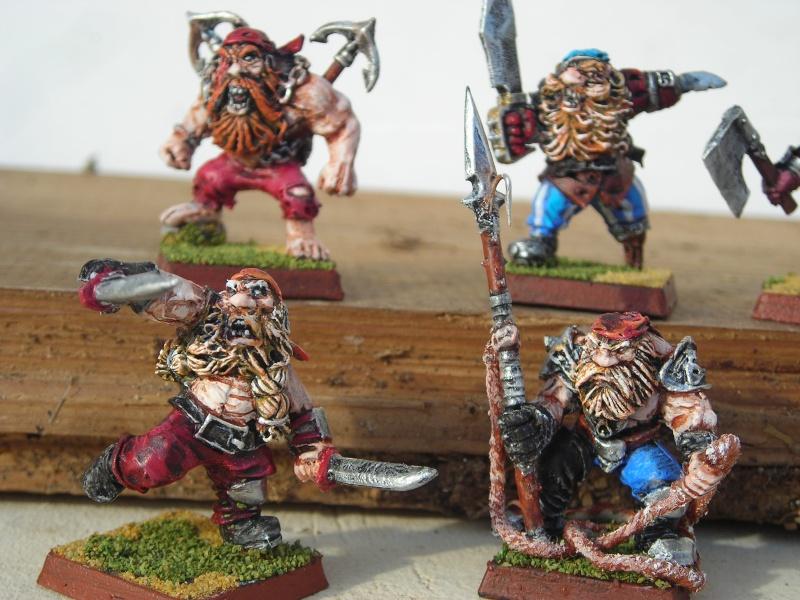 Armée de pirates nains Dscn0413