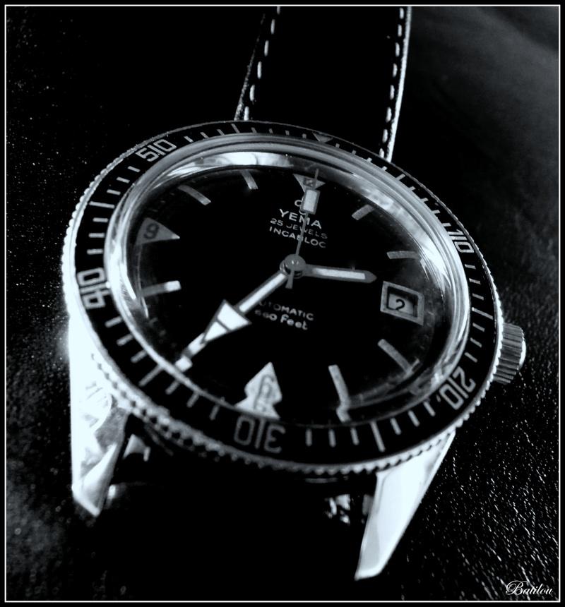 ploprof - La montre de plongée du jour - tome 2 - Page 42 P1130311