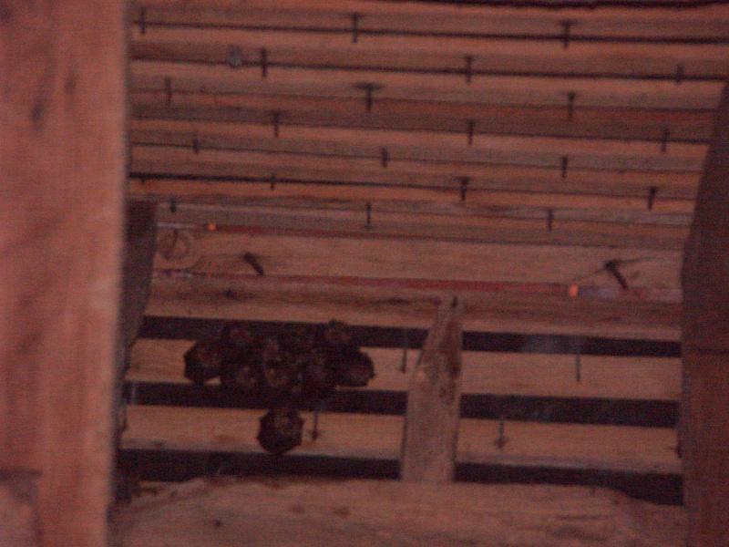 Suivis de la mise-bas des chauves-souris - Cuvée 2012 A-14_j12