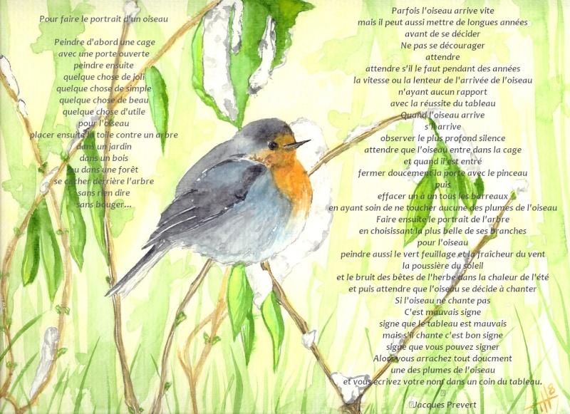 Les oiseaux : la passion de Marylou - Page 3 Sans_t16