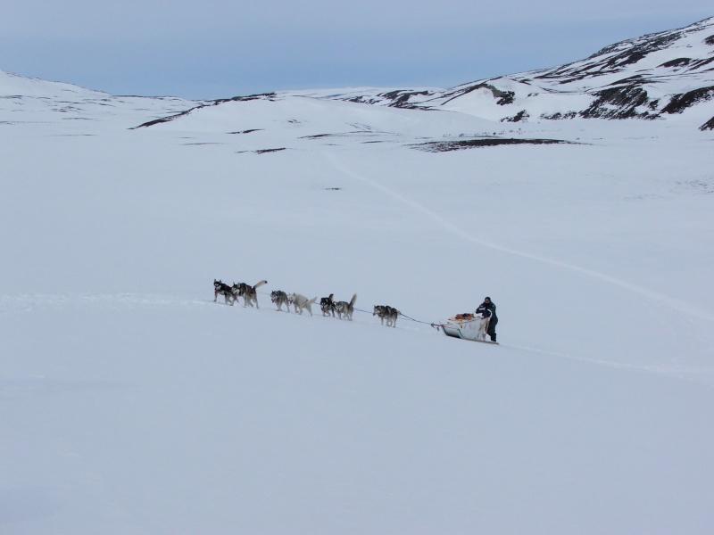 Quelques photos Laponie Finlandaise Fxcd0011