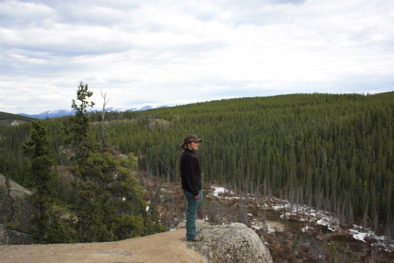 Quelques photos Laponie Finlandaise Img_5012