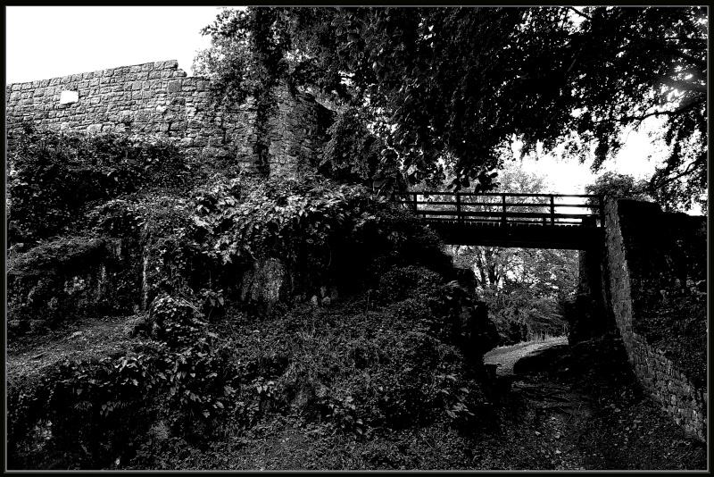 Ruines _dsc1710