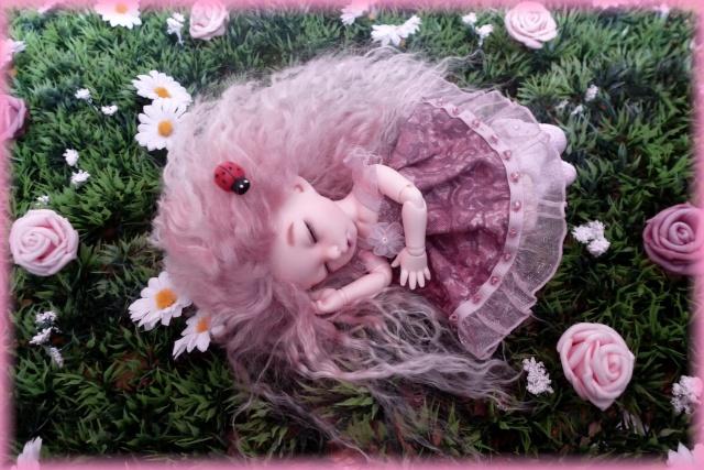 Rose de thé...[PKF Ante] 01423