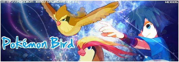 Pokemon Bird