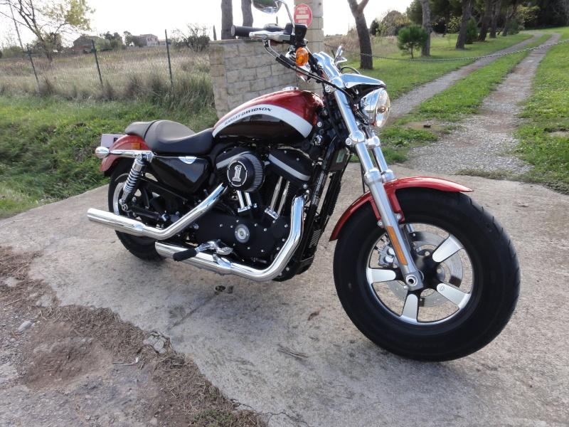 hello nouvelle 1200 custom Dsc01518
